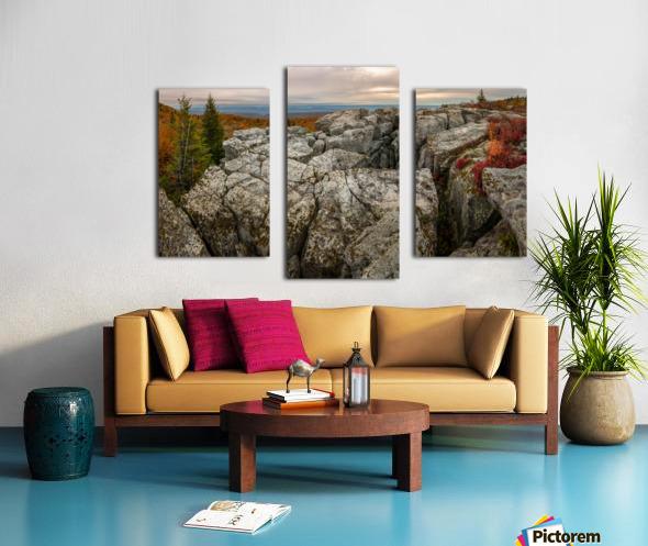 Bear Rocks Preserve apmi 1791 Canvas print