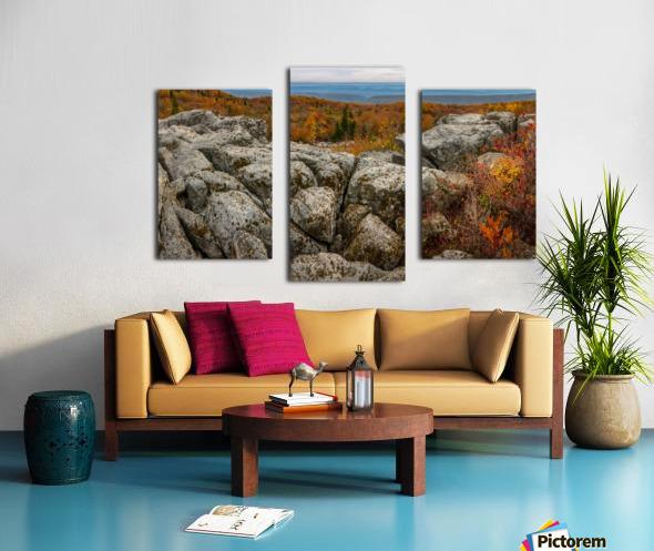 Bear Rocks Overlook apmi 1793 Canvas print