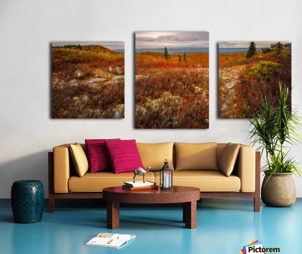 Colors of Nature apmi 1782AL Impression sur toile