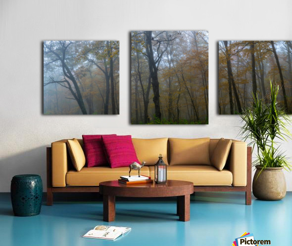 Treeline apmi 1867 Impression sur toile