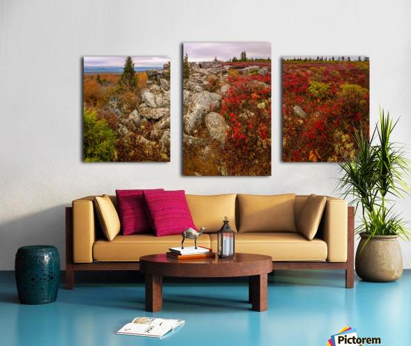 The Colors of Nature apmi 1786AL Canvas print