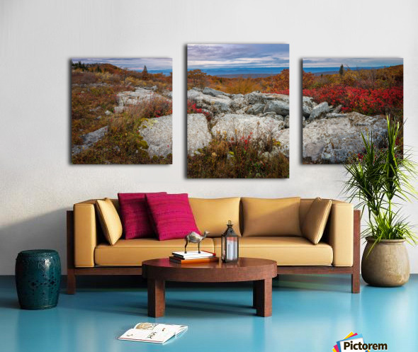The Colors of Nature apmi 1781 Canvas print