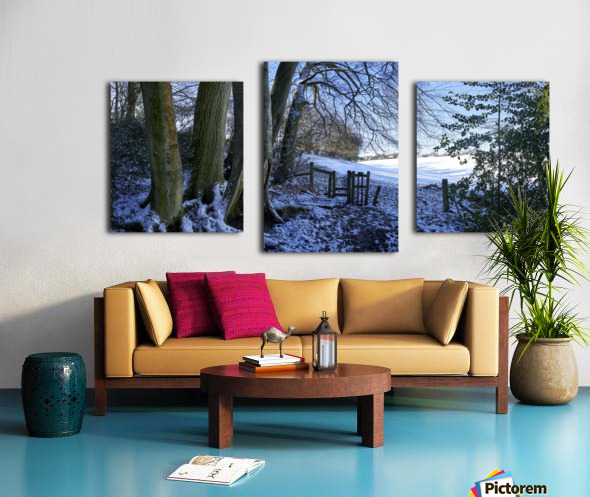 Woods in the Snow Canvas print