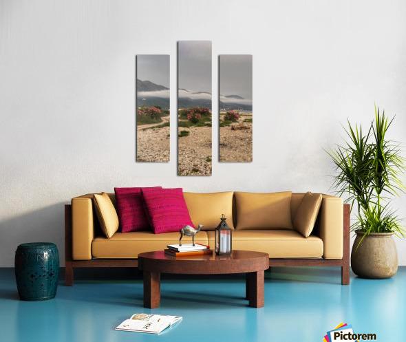 Albania Canvas print