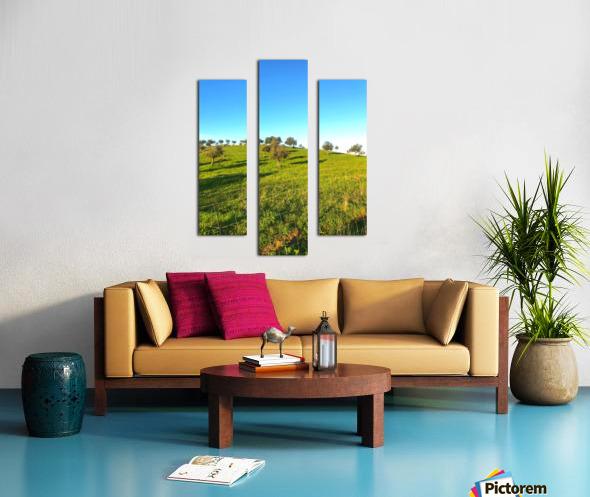 Landscape of central Portuga Canvas print