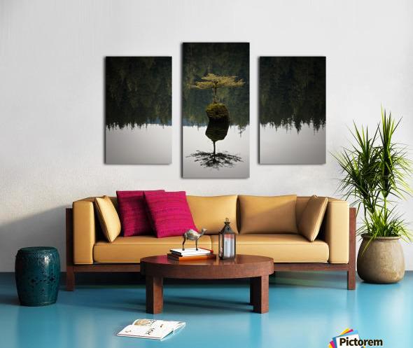 Reflection on a Bonsai Tree Canvas print