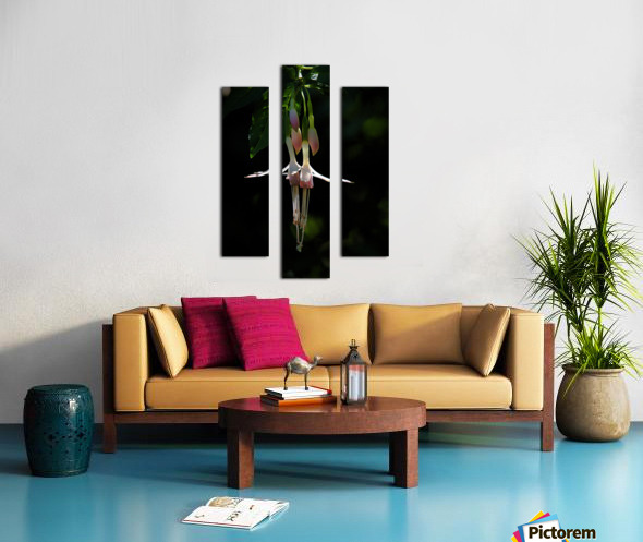 Gently Hanging Canvas print