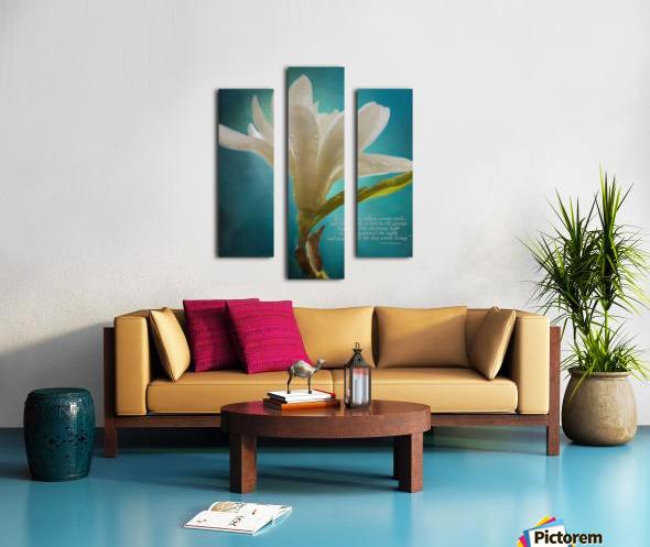 Like Morning Light - Flower Art by Jordan Blackstone Canvas print