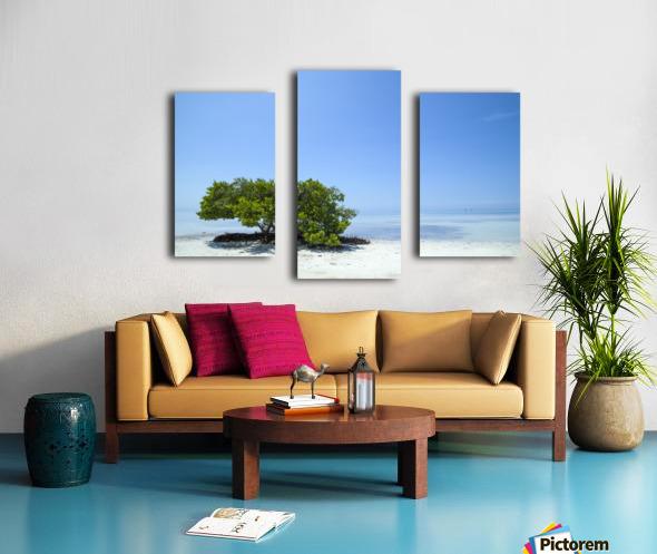 FLORIDA KEYS Lonely Tree Canvas print
