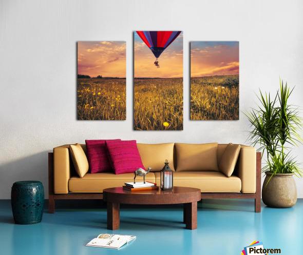 The Aeronaut Canvas print