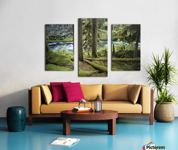 The Mckenzie River Canvas print