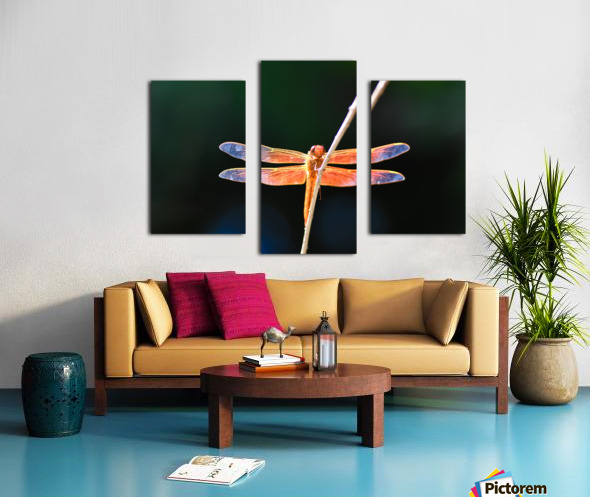 GOOD VIBES ONLY collection 1-4 Canvas print