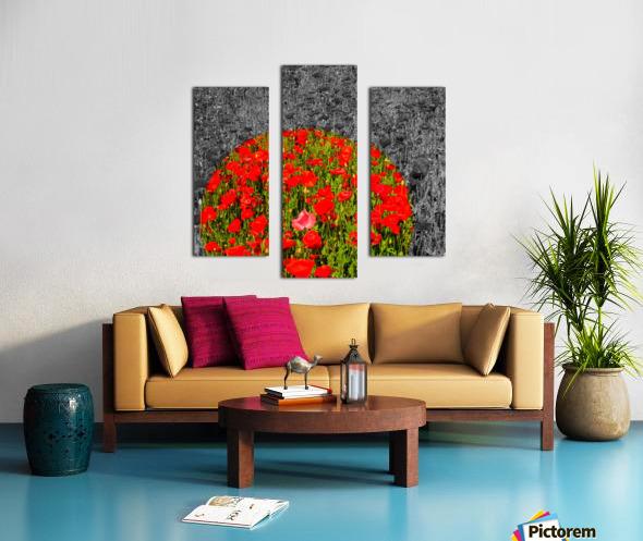 Poppy Popper Popping Canvas print