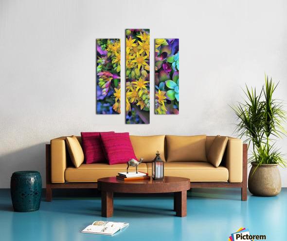 Echeveria Hybrid With Yellow Flowers Canvas print