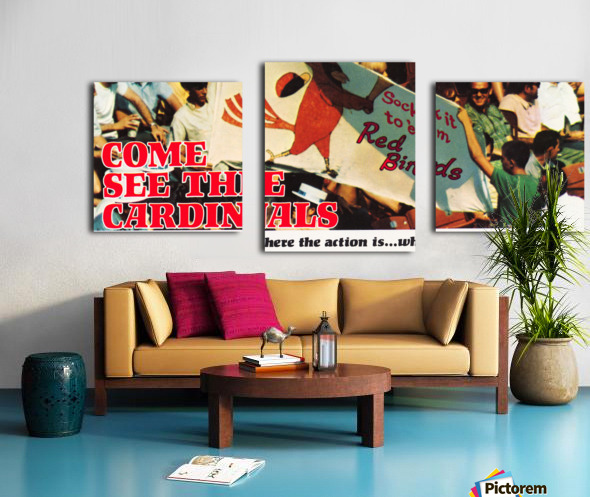 1970 St. Louis Cardinals Baseball Poster Canvas print