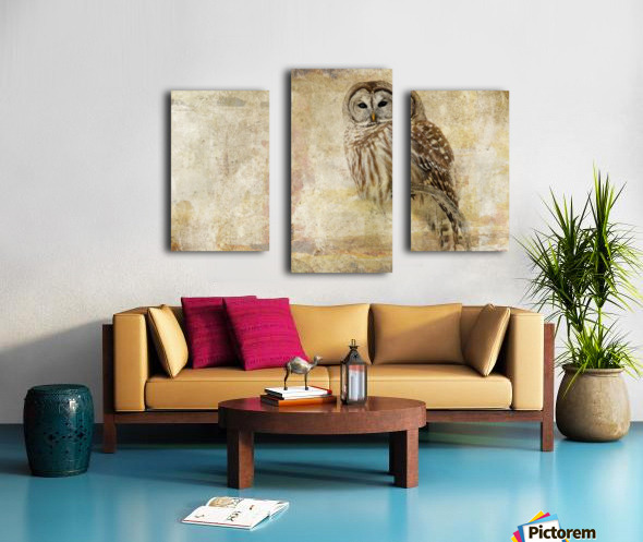 Strix Varia Canvas print