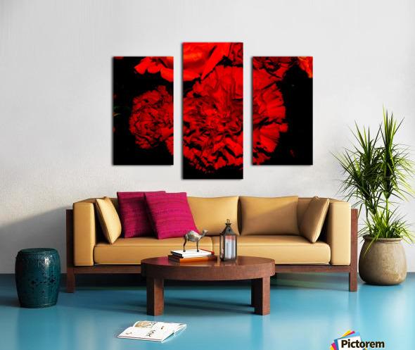 sofn ED31563A Canvas print