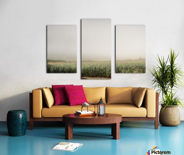 Summer Dust Cornfield Canvas print