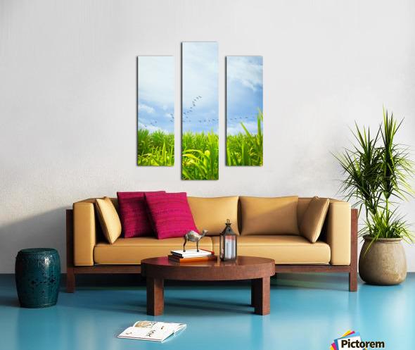 Midsummer Cornfield Canvas print