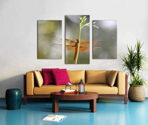 PEEK-A-BOO  Collection 1-4 Canvas print