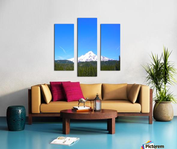 Mount Hood in Spring Canvas print