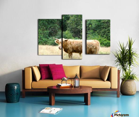 Hairy Coo - Scottish Highlands Canvas print