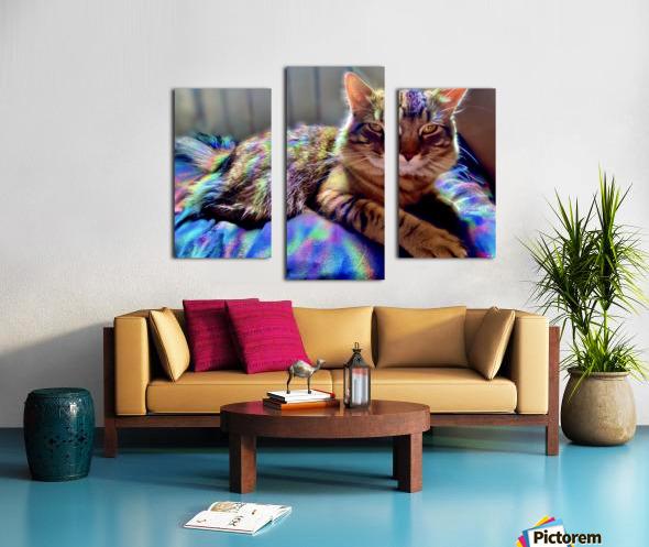 Rainbow Kitten Surprise  Canvas print