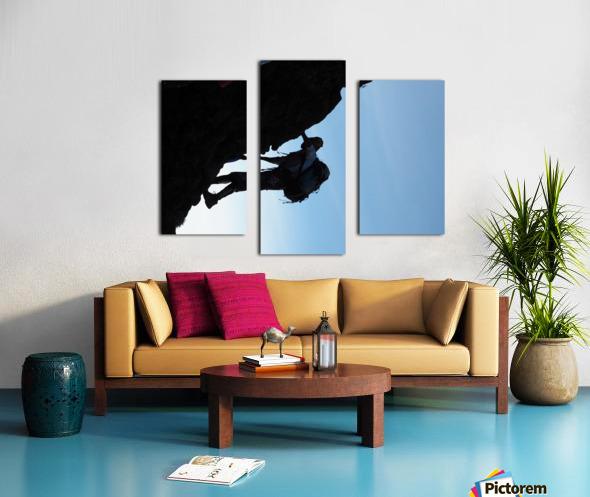 E224C231 27A0 4637 9E50 04429AB32EBC Canvas print