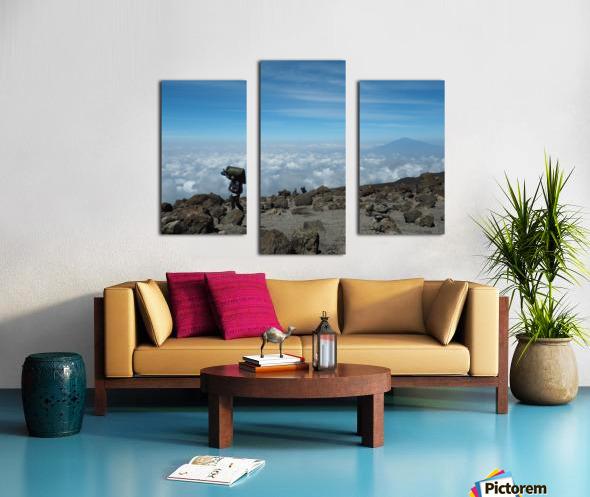 A7A60482 E274 493E A893 B801EB7EB298 Canvas print
