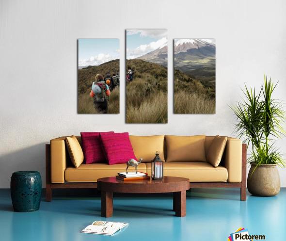 2CAEEB24 3011 46FC 848B 1952A02E0E6D 1 102 a Canvas print