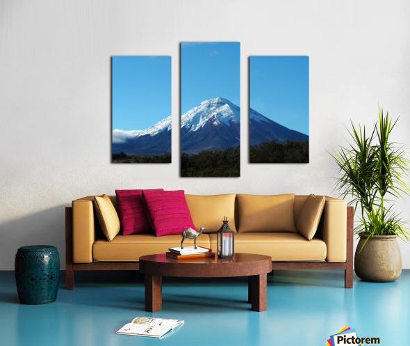 4AC2DAA8 F088 42F8 984A F2C96F02A281 Canvas print