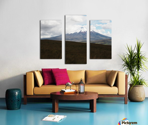 1748B712 BA68 4386 83ED 6D009210449E Canvas print