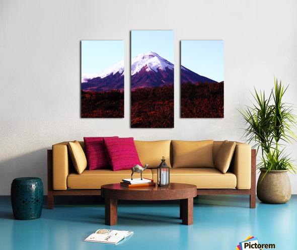 E5551BA9 0D0A 4BCE A22F 7C1BCD9EFC16 Canvas print