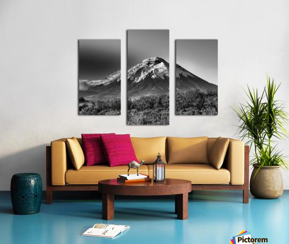 24810937 454A 4C55 B80D 39BE65C2F639 Canvas print