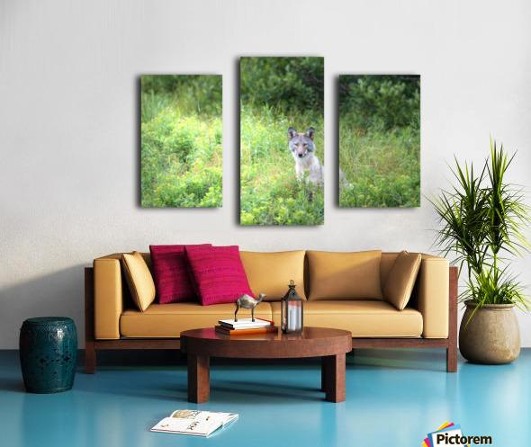 Sitting Pretty Canvas print