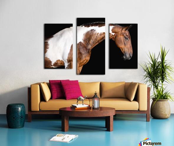 Paint Horse Portrait - Comanche Canvas print