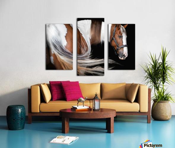 Paint Horse Portrait Canvas print