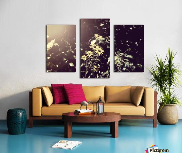 Shine On Me Canvas print