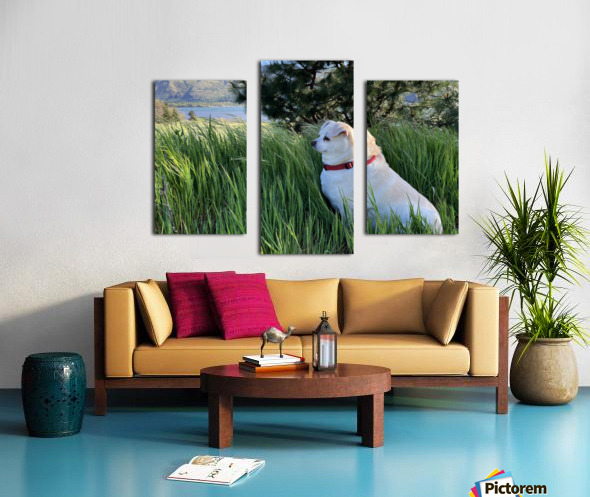 Blossom in Tall Grass Canvas print