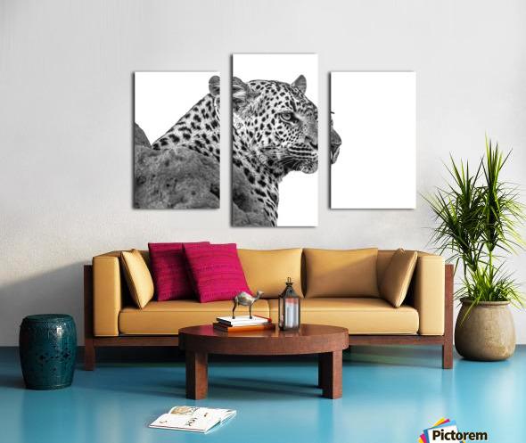 Leopard - B&W Canvas print