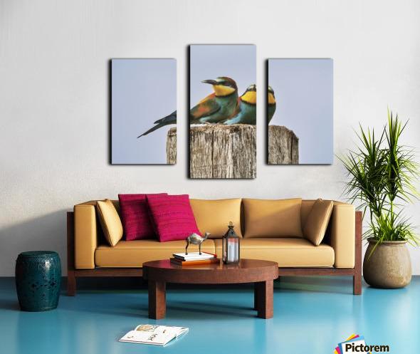 European Bee-Eaters Canvas print