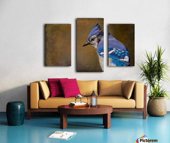 Blue Jay with texture Canvas print