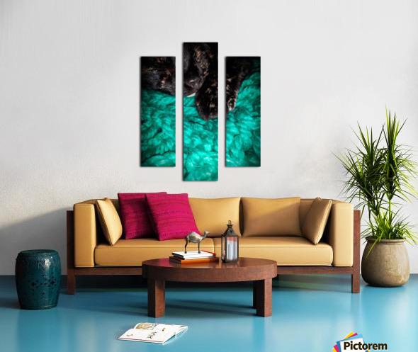 80CF134A 30F5 435E AE47 E42B13691760 Canvas print