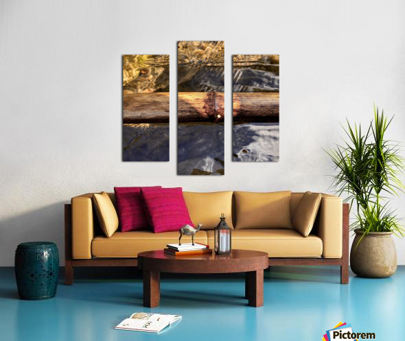 8A0EA682 A5EC 4E2C 86D4 1447338CF73D Canvas print