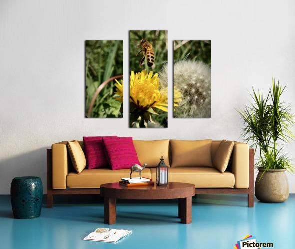EEE50D7C AA2E 4083 A9C6 76BAFE43F0C7 Canvas print
