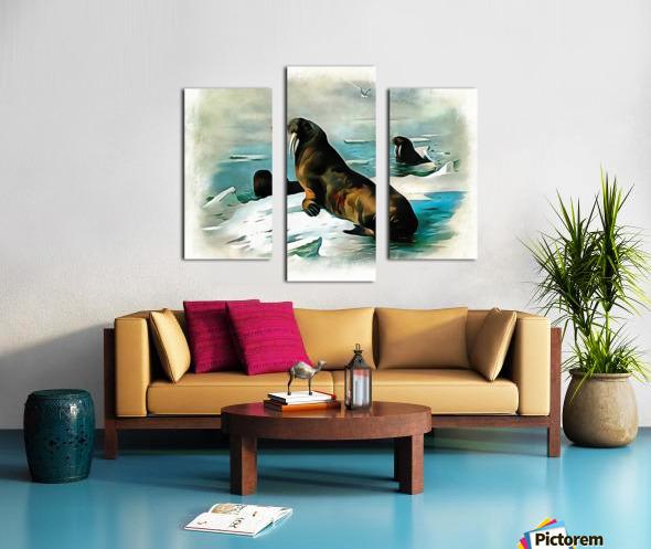 Walrus Illustration Canvas print