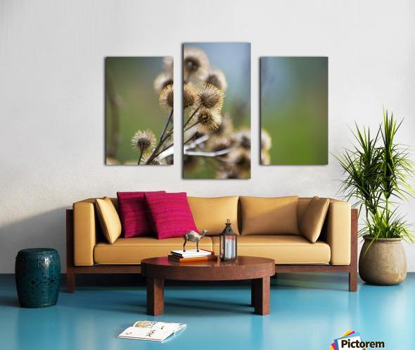 Burdock Bouquet Canvas print