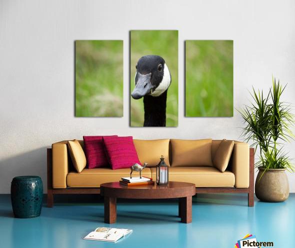 Toothpick Goose Canvas print