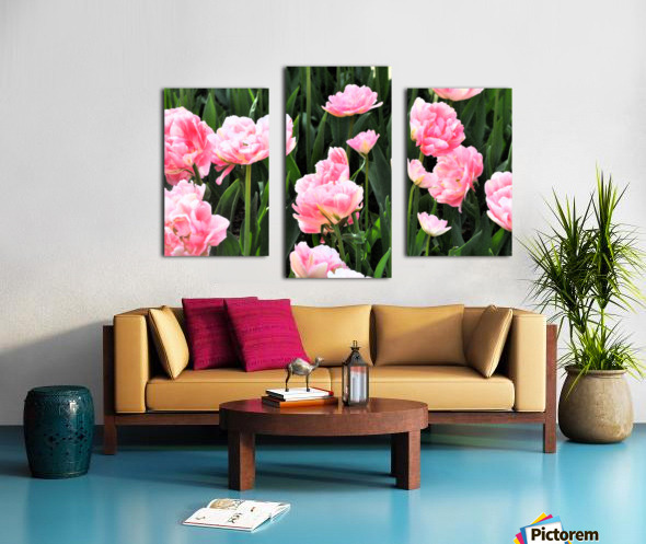 Double Pink Tulips Canvas print
