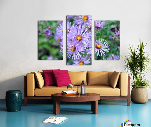 0056 Canvas print